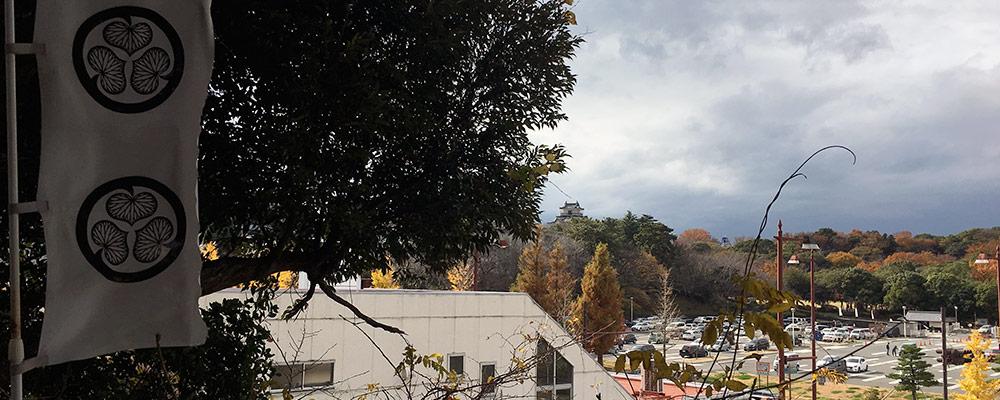 元城町東照宮境内から浜松城公園駐車場を越えて浜松城天守を望む、曳馬古城を取り込む形で浜松城は大きく拡張されたのが分かる(2015年12月12日撮影)