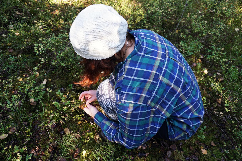 sienimetsä, sienestäjä, sieniä, suppilovahvero