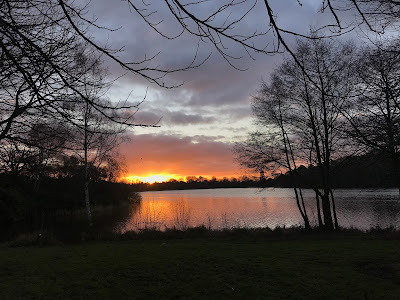 Sunset, Lake, Walk, Surrey