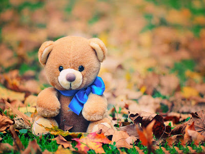 teddy-bear-walls-images-walls