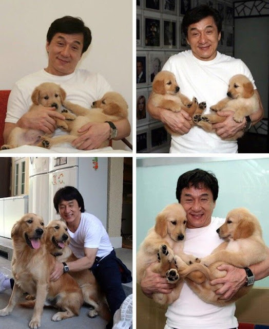 blessing you all with some jackie chan and doggies