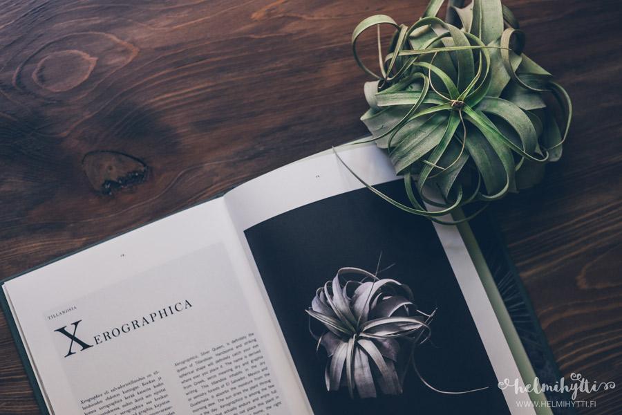 ilmakasvit-kirja