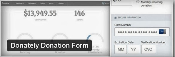 Donately Donation Form WordPress plugin