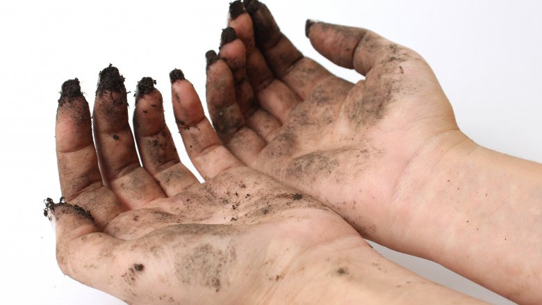 "Dead skin cells create a ""rich medium for putrid bacteria to grow"""
