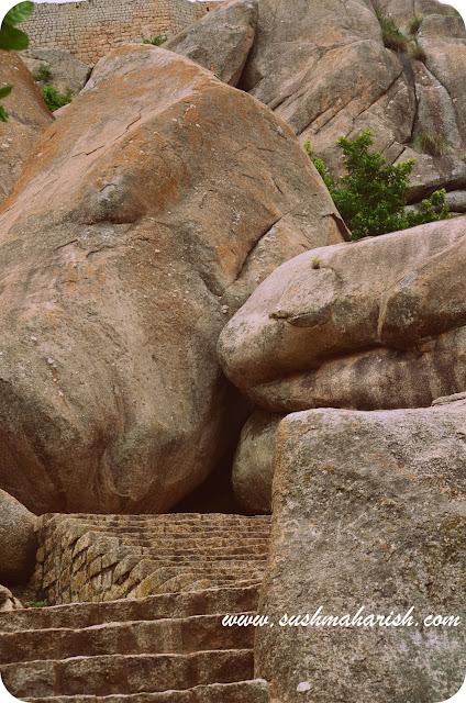 The Chipmunk Fort Of Karnataka 6