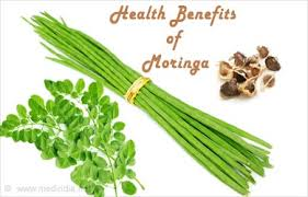 moringa(sahjan) health benefits in urdu