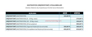 İzmir Kısırlaştırma Fiyatları