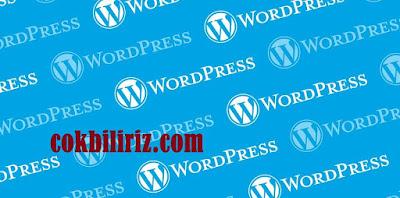 WordPress Teması Değişince Trafik Etkilenir Mi?