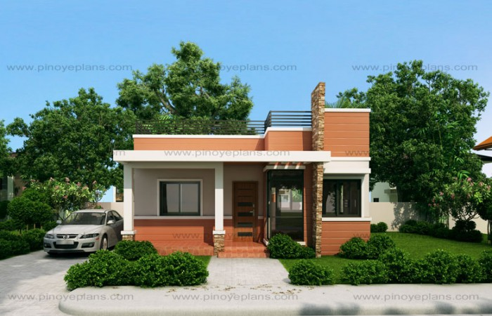 Myhouseplanshop Single Story Modern House Plan With Roof Deck