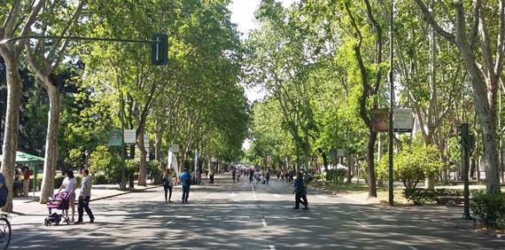 Los domingos 39 pasea madrid 39 por el paseo del prado sin for Calle prado 9 madrid