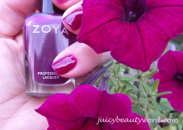 zoya alia and purple petunias