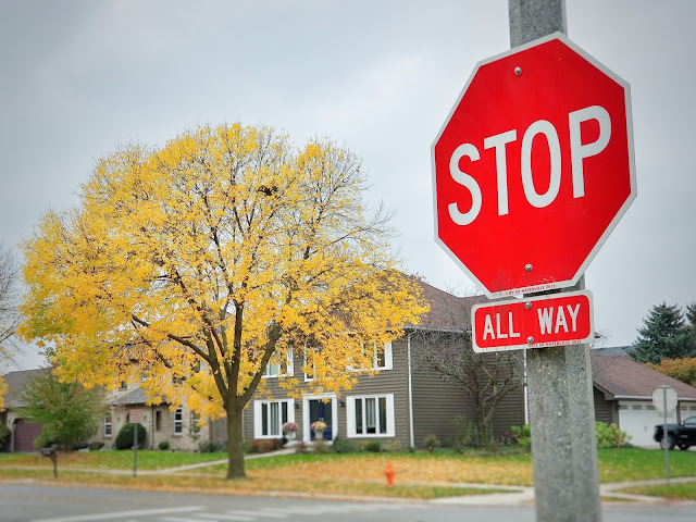 stop sign ahead of a beautiful yellow tree in the fall season
