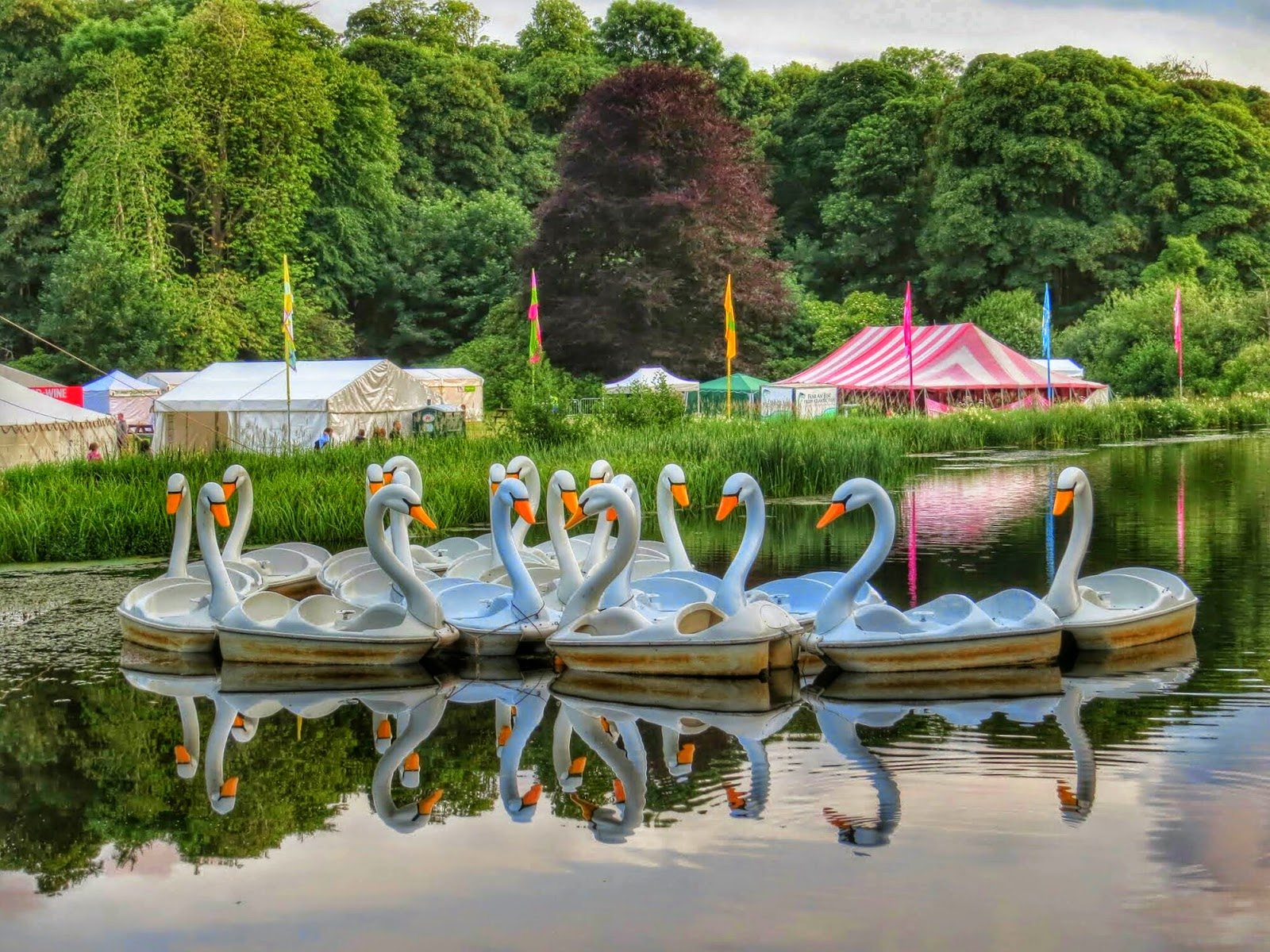 Westport House - Swan Boats