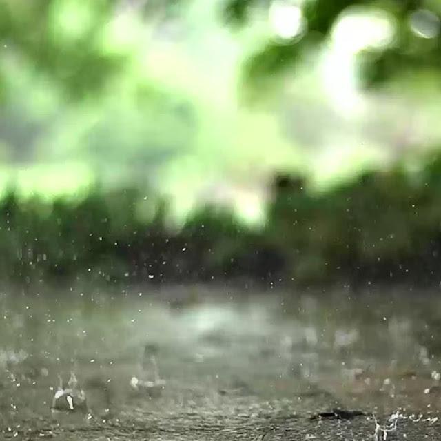 Rain Drops Wallpaper Engine