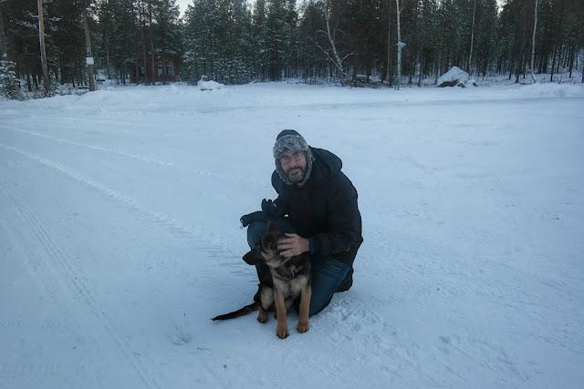 Filhote de cachorro em Ivalo, Finlândia
