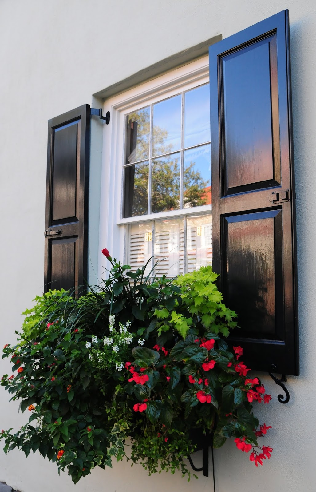 Charleston Window Box with black shutters