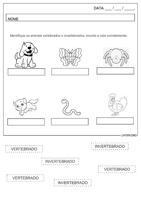 Atividade Animais Vertebrados e Invertebrados Corte e Colagem