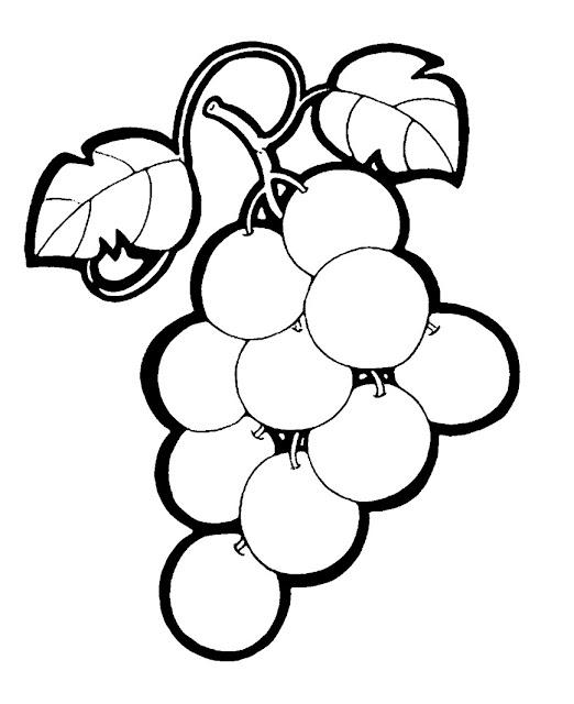 84+ Gambar Anggur Paud Paling Hist