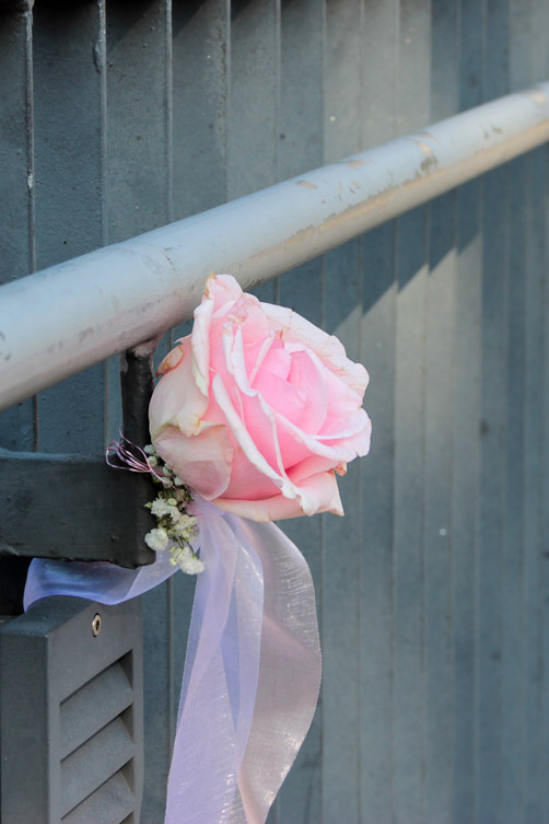gray & pink, rose on the railing, colors
