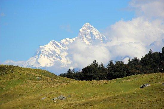 Visit Nanda Devi National Park in Uttarakhand
