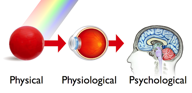 Physical - Physiological - Psychological.