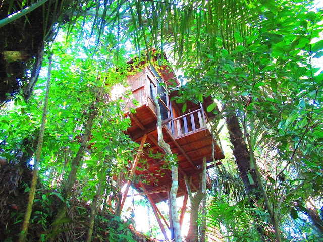 HARS GARDEN TREE HOUSE: Romantic, Unique and Environmentally Friendly Lodging in Ubud, Bali