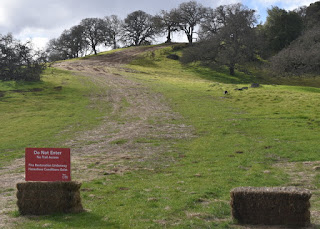 "Hay bales and ""do not enter"" sign at fire trail intersection, Rancho Cañada del Oro Open Space Preserve, San Jose, California"