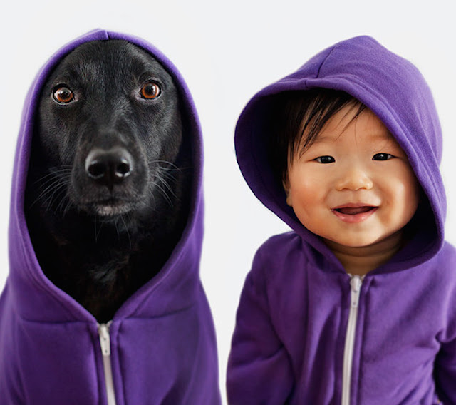 Babies Who Grow Up With Pets Have Less Allergies
