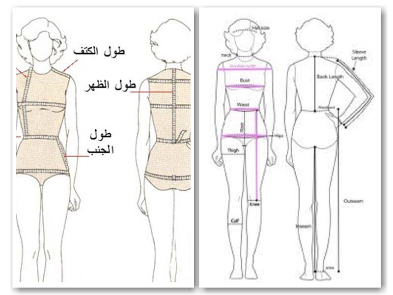 توصيه كمية المبيعات رسوم الدخول قياسات الجسم للرجال Comertinsaat Com