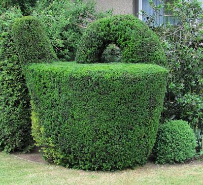 buchs in form schneiden buchs schneiden buchsbaum. Black Bedroom Furniture Sets. Home Design Ideas