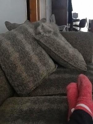 Gato camuflado con sillón