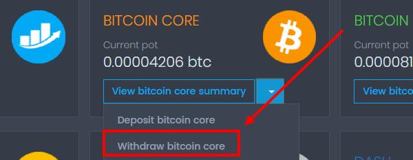 Вывод Bitcoin Core с КоинПот