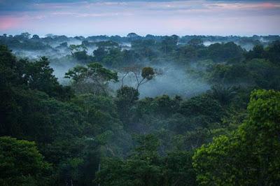 Ritual Ala Suku Pedalaman Amazon