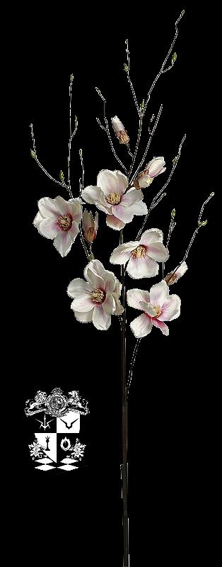 render flor