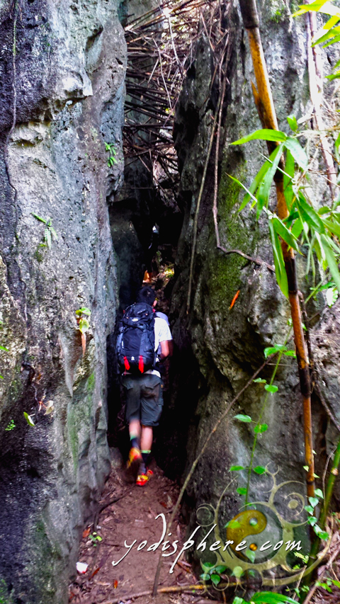 Cave like passageways as part of the trail going up Mt. Sipit Ulang