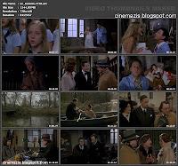Le témoin (1978) Jean-Pierre Mocky