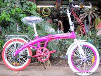 Sepeda Lipat Element Fixie Alloy Frame 20 Inci