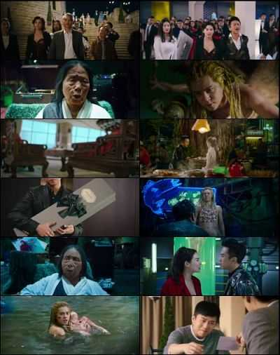 The Mermaid 2016 English BRRip