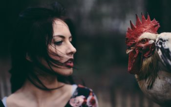 Wallpaper: Lady and the rooster