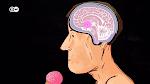 Nuestro.cerebro.es.lo.que.comemos.2019.DOCU-01913.png