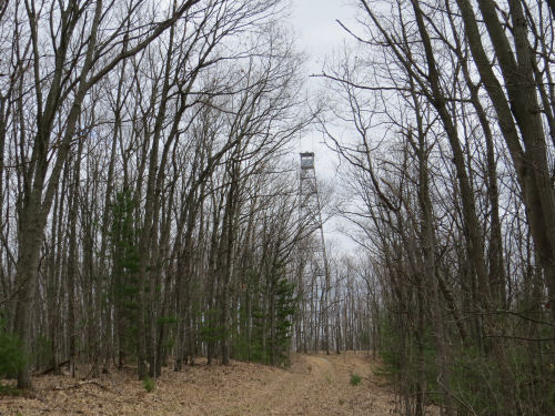 Udell Fire Tower