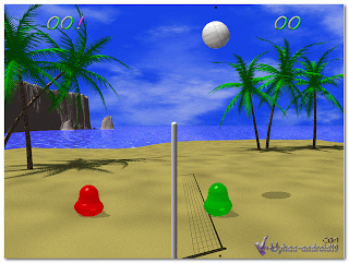 VOLLEY BALL SMALL GAME