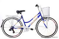 City Bike United TC3650 C1.01 7 Speed Shimano 26 Inci