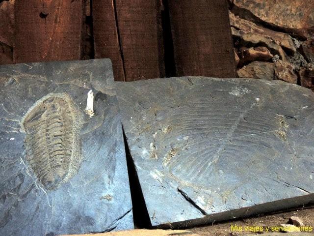 Casa de los fósiles, Casa dos Fósseis Penha García