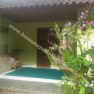 Homestay Di Bali Yang Murah Dan Terkenal