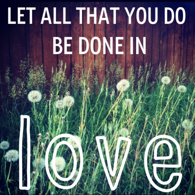 Download LOVE