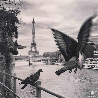 My Travel Background : 15 photos prises au bon moment ! France