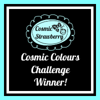 Cosmic Colour Winner