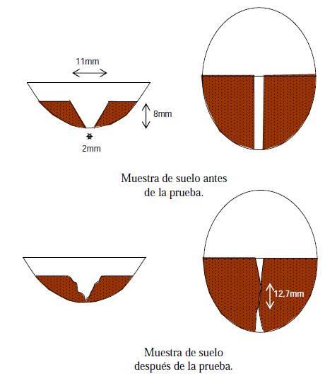 copa de casagrande2