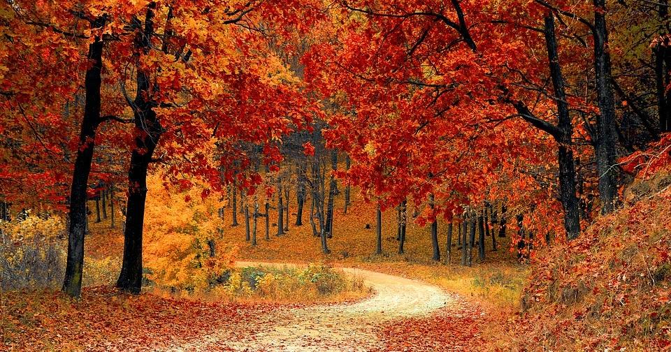 Gli 8 luoghi più belli da visitare in autunno